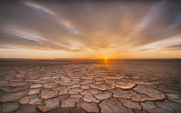 picture shows a sunset in a dry dessert area